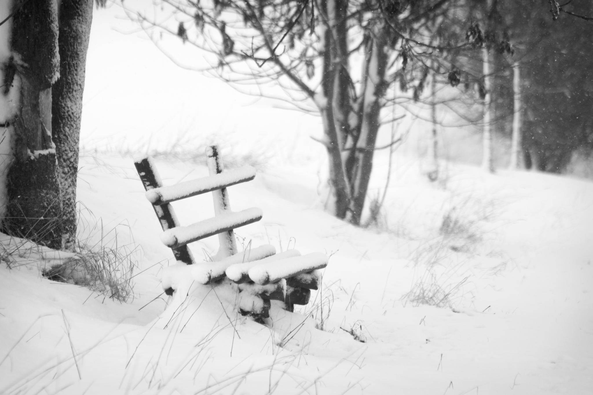 Aufnahme einer Holzbank in verschneiter Winterlandschaft..